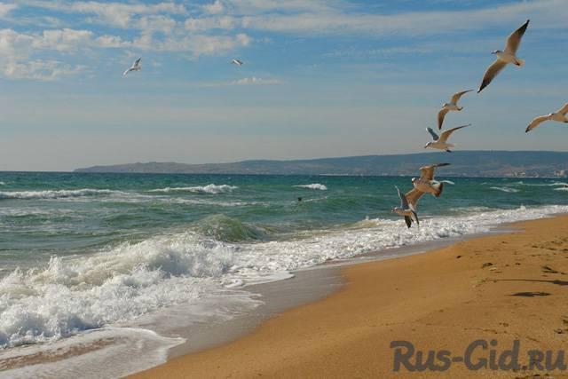 Частное с пляжей феодосия 56